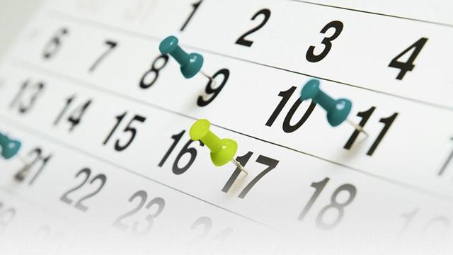 Сколько раз в день могут звонить коллекторы: временные рамки и особенности общения